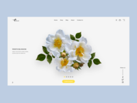 Floved. Online Store Concept