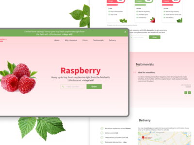 Landing page: raspberry selling