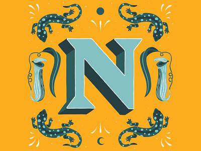 N - 36 Days of Type illustration lettering lettering artist handlettering type 36daysoftype 36daysoftype21 lettering art typography customlettering