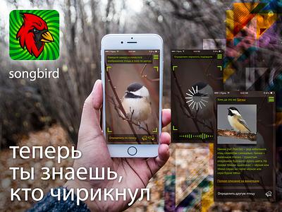 Songbird app concept ui ux