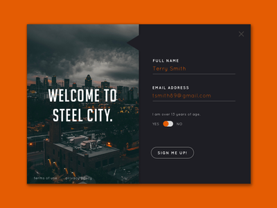 Steel City dailyui pop up radio button form sign up email form orange steel