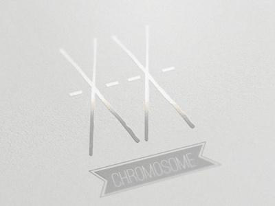 XX Chromosome Logo logo branding identity project book chromosome fashion sanjchek design xx chromosome visual identity