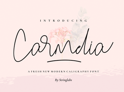 Carmelia - A Fresh Modern Calligraphy Font