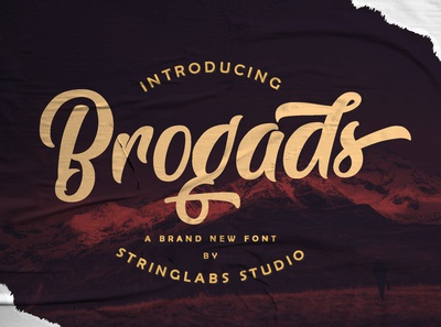 Brogads - Bold Script Retro Font