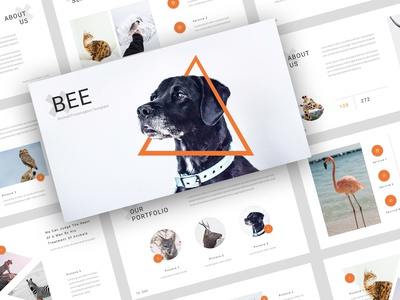 Bee - Animal & Pet Services PowerPoint Template