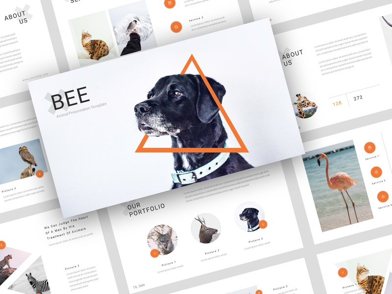 Bee Animal Pet Services Powerpoint Template By