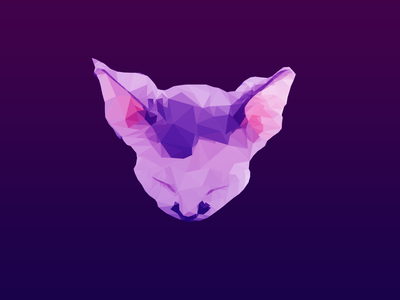 Cat Low Poly Art picture illustration