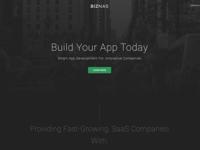 Biznas Landing Page