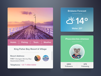 Widgets Set [Freebie]