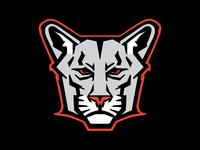 Cougar Logo Concept
