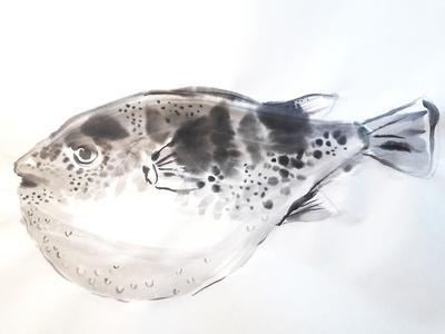 Fugu fish