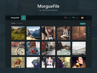Morgue File Redesign photo redesign photostock web ux ui minimal clean simple design dark