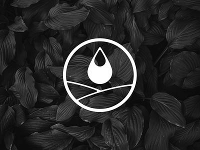 Oleaginosos Uruguay brand identity grmn agriculture seeds branding symbol logotipo isotype update logo update brand