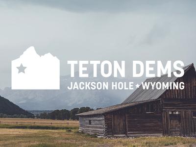 Teton Dems Identity korolev mountain wyoming jackson hole democrat political politics branding brand identity logo