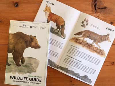 Wildlife Guide - Wyoming Wildlife Advocates non-profit animals wildlife wyoming print coyote fox grizzly bear yellowstone lato