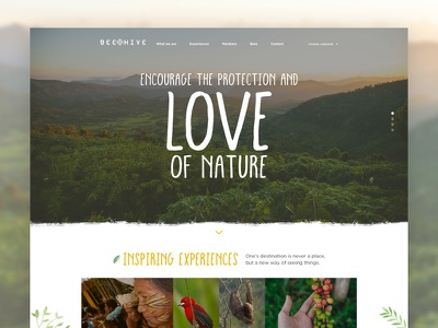 BeeHive website outdoors nature hotel travel