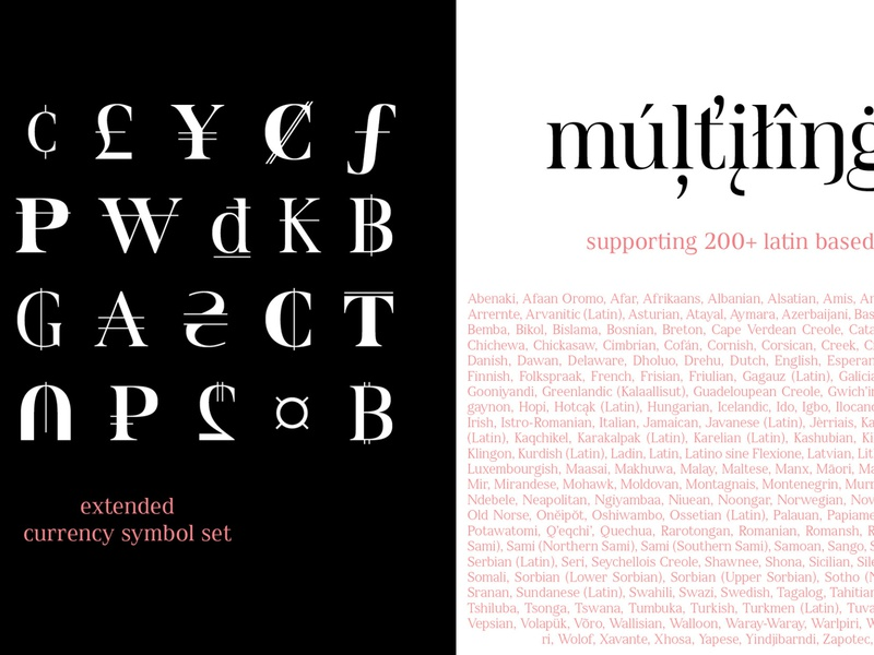 Spitzkant Font Family languages graphicdesign illustration logo ux ui languages typeface typedesign editorial typography branding