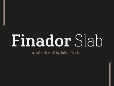 Finador Slab Font Family logo graphicdesign typography graphic font editorial design branding typeface typedesign