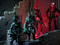 Cobra Guard Duty