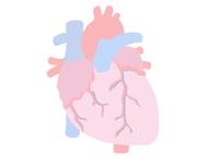 HEART flat design