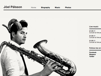 Joel Palsson, musician
