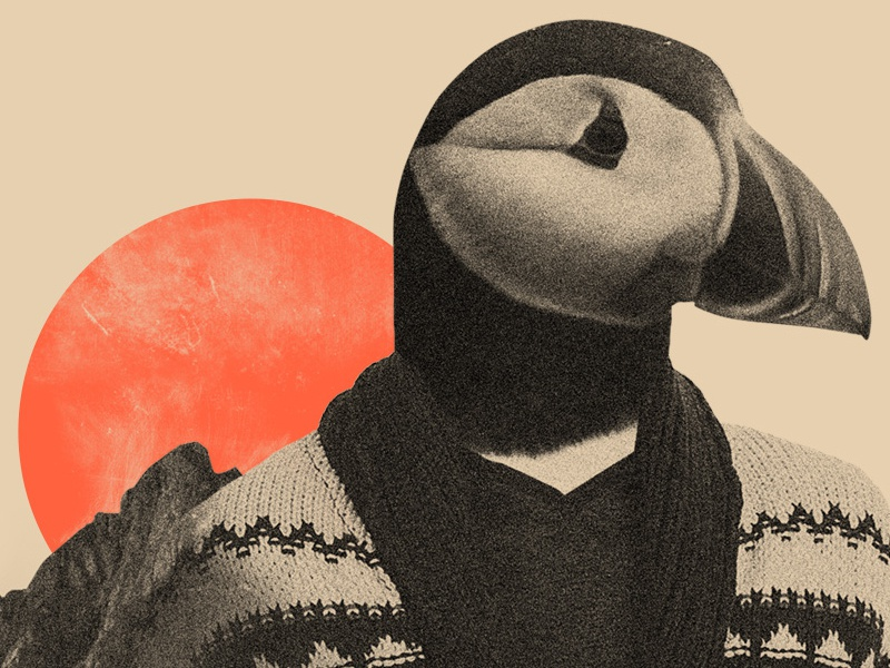 The Hipster Puffin collage illustration
