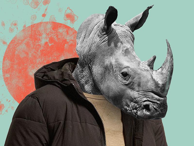 Normcore Rhino collage design