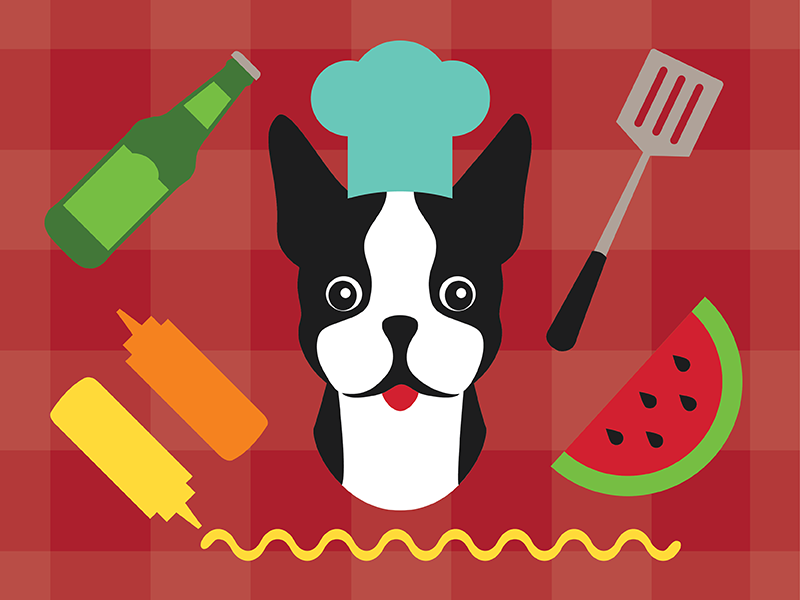 BBQ Terrier cute chef picnic beer watermelon bbq illustration dog boston terrier