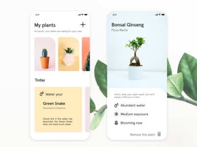Plant App designs, themes, templates and downloadable