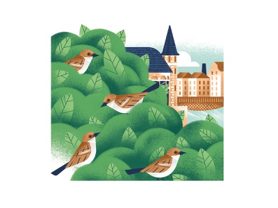 Ugenters Magazine - Appelbrugparkje sparrow birds gent ghent park bush nature editorial illustration vector texture dsgn illustration daniele simonelli