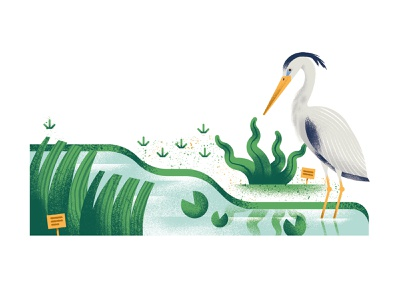 Ugenters Magazine - Plantentuin water plant park heron spot illustration editorial illustration vector texture dsgn illustration daniele simonelli