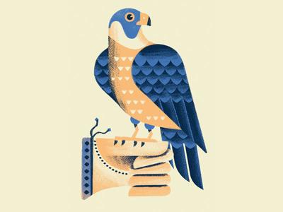 A bird in the hand is worth two in the bush proverb glove falconry hawk illustration daniele simonelli dsgn