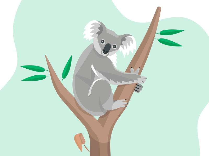 Koala hug tree leaves nature green flat vector art beautiful graphic art color illustration design vectors polygons