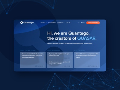 Quantego – website design company branding logistics it website hero ui design startup technology hero section homepage brand design minimal