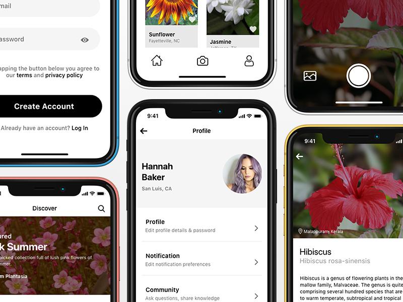 Plantasia: Plant Identification iOS App by Arjun K  on Dribbble