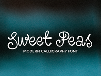 Sweet Peas Modern Calligraphy Font