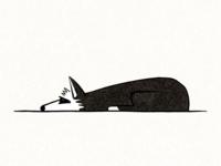 dog study #1