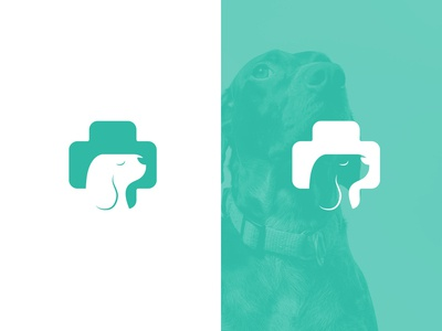 Veterinary Logo Concept