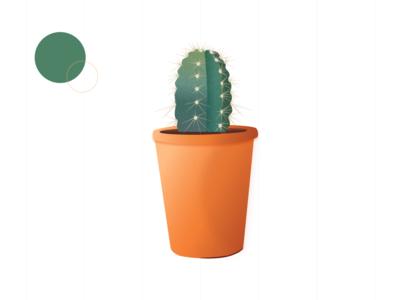 Cactus 🌵 prick cactus plant pots leaves green plants vector orange illustration design