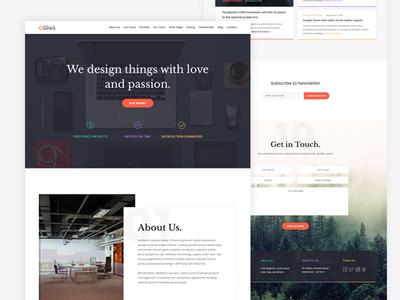 Alexis - Portfolio Template personal works team agency color portfolio template ui web design