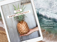 The Sweet Strategy - Online Program