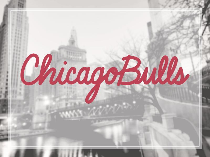 Janessaraeslangen chicagobulls handlettering