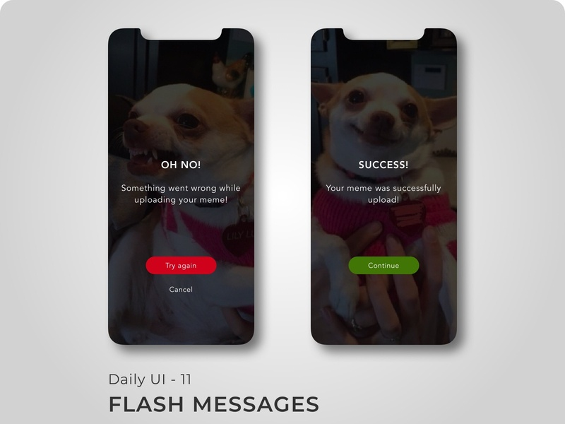 Daily UI: Day 11 - Flash Messages flat app ux typography branding ui design 100 days of ui 100 days challenge