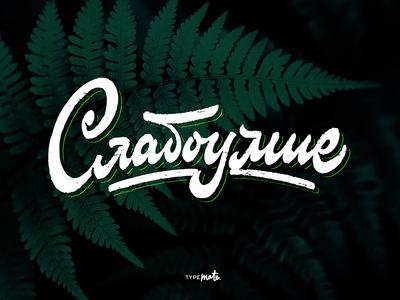 Слабоумие sketch logotype logo type custom type typography calligraphy lettering typemate
