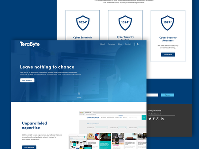 Terabyte homepage tech homepage website clean simple blue branding brand