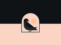 Tika the bird