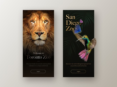 Zoo nature welcome screen typography concept design inspiration inspiration ui design ux ui zoo design application app animals