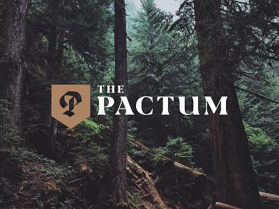 Pactum Podcast bible biblical theology podcast design monogram blackletter podcast branding logo lettering handlettered design typography