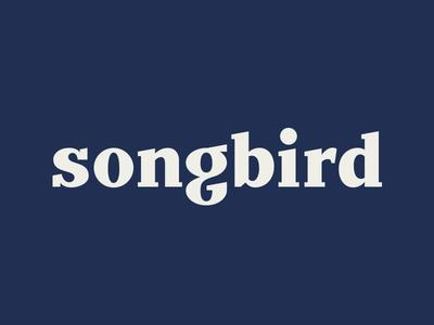 Slab the Bird word mark type typograpy wordmark lettering sticker logotype logo