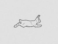 Alpha Bunny